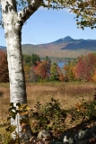 Overlooking Chocorua Lake