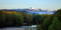 Spring in the White Mountains