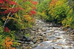2010_09_28_sawyer_river