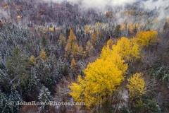 Seasons Collide in East Burke, VT 10/17/20