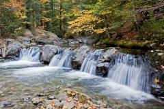 Fall at Cold Brook